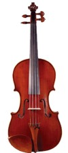 This violin is a member of the family of stringed instruments.